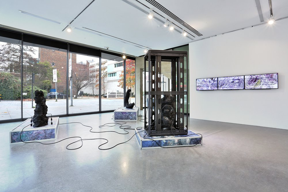 Installation view of Codex Exophora, solo presentation in the Dyson Gallery