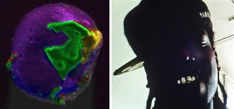 Left: A grain of sand from the beaches of D-Day from 'War Sand', Donald Weber, 2018; R: The geology of underground hip hop scene, Doug Rickard, ongoing project