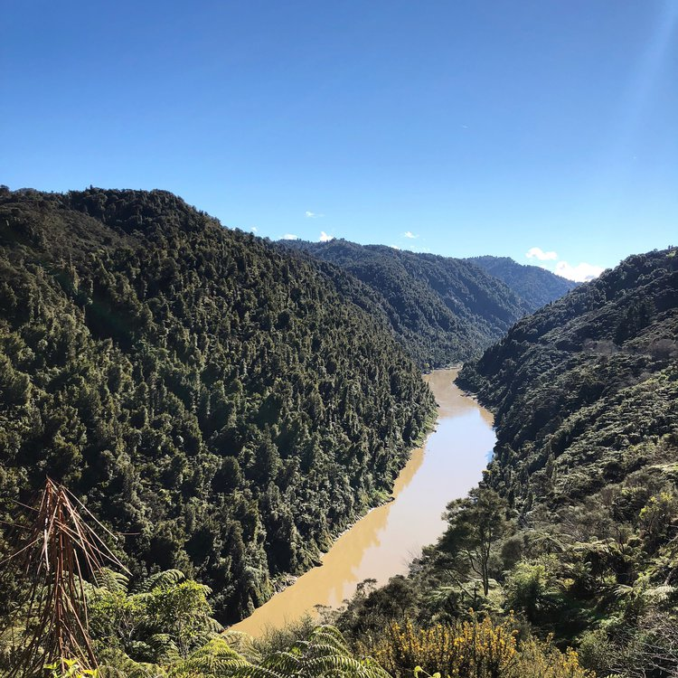 Whanganui River in Aotearoa New Zealand, recently granted legal personhood. 2018
