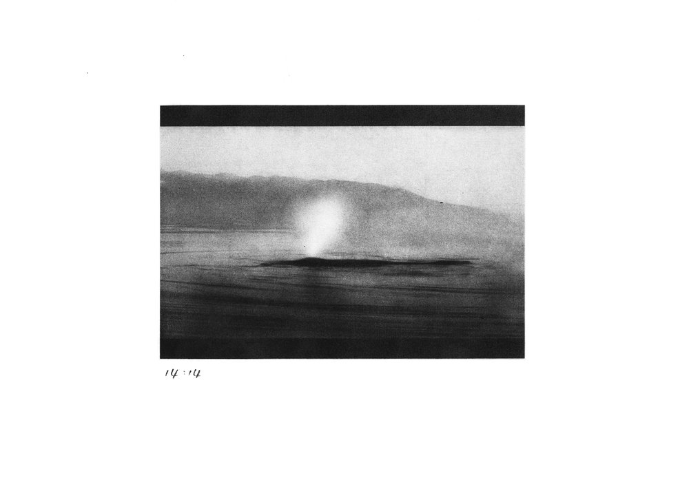 14:14 (from print series Whale Study)