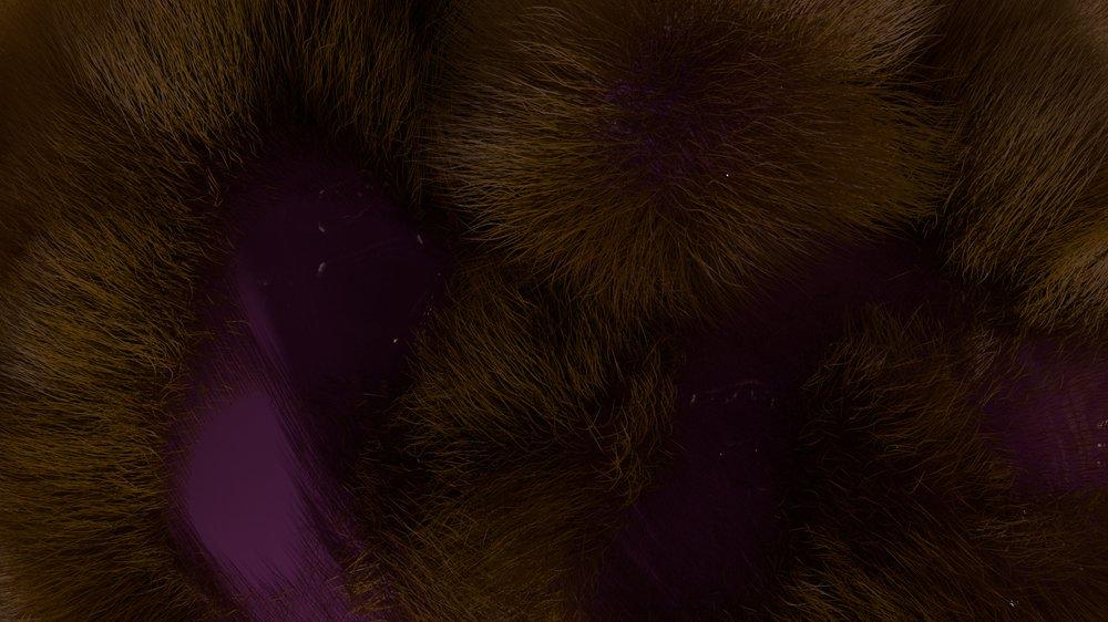 Mole count (video still)
