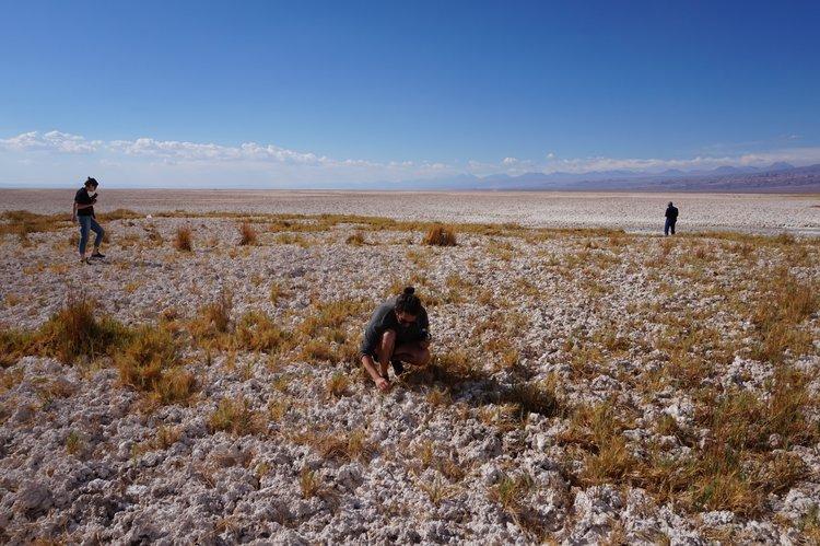Dried out lagoons, Salar de Atacama