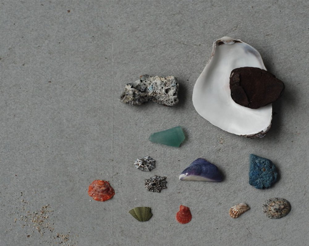 Sea shell composition, KyoTango