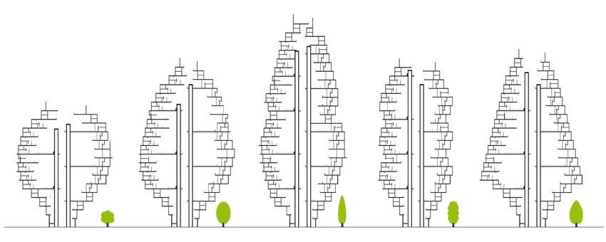 Sky Street - Typologies