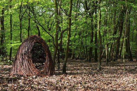 Nest 1- Woodland Installation