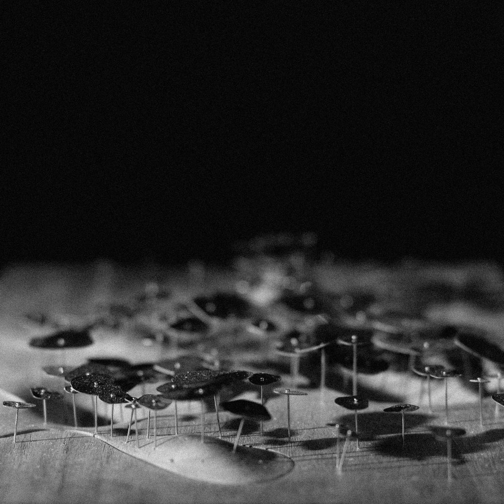 Blurring Boundaries. Strategies: Fragmenting