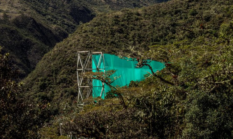 This curtain evidences secrets of the cloud forest and the disappearance of clouds. The forests of Wayqecha, Peru, rely on cloud moisture for sustenance, but climate change moves that cloud layer higher every passing year. Source: The Guardian