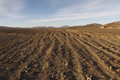 Atacama ancient path between Quillagua and Calama