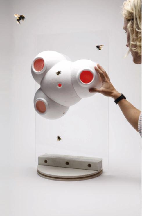 Beeosphere prototype.