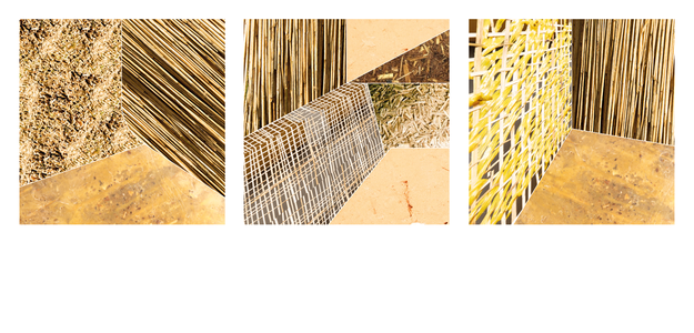 REED TRIPTYCH