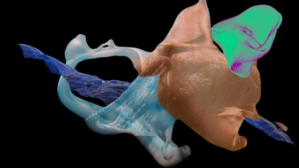 Turbulent Protein