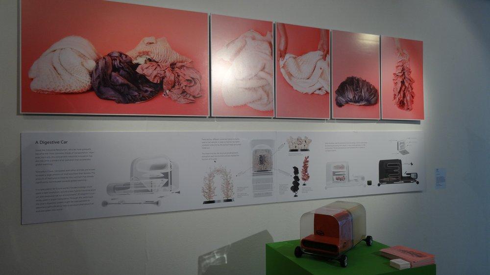 Show 2015, Yi-Wen Tseng, Design Interactions