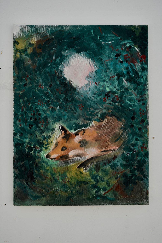 Fox in Blackberries