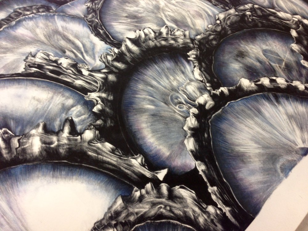 Oyster Print in progress
