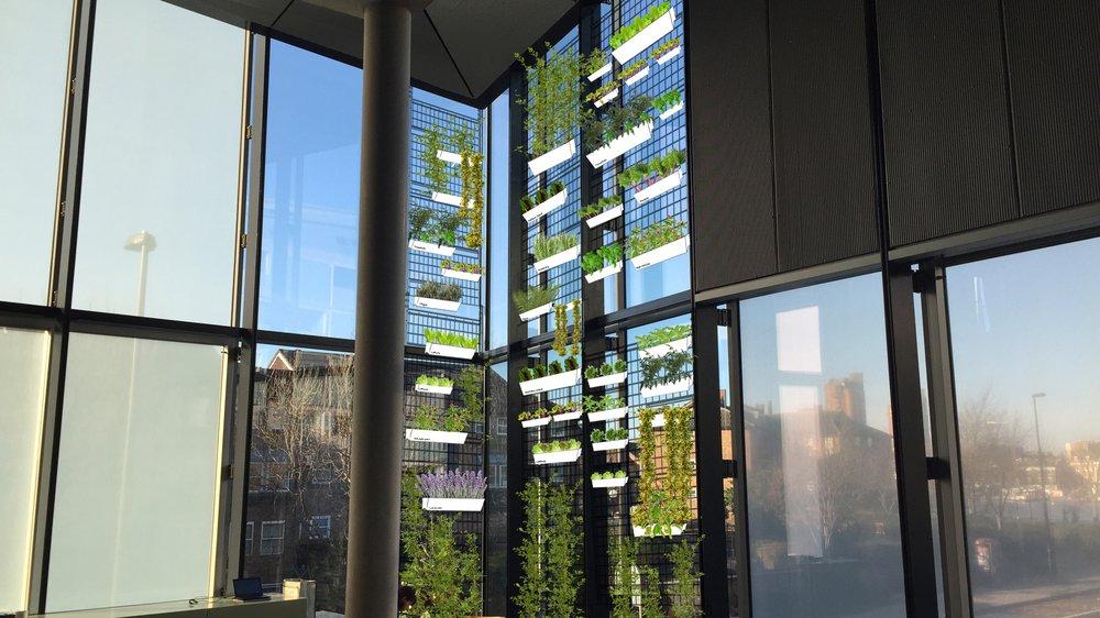 Hanging Garden, Dyson Building proposal