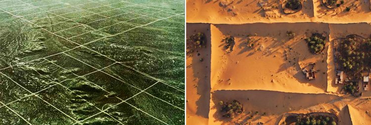 Parceling the unknown. Left: Out-of-state dealers bought and marked off ten-acre tracts for mail-order sale near Elko, Nevada. Right: Oasis-dwellers near Timimoun, Algeria erect fences made of palm fronds to protect their gardens from the shifting sand. Sources: National Geographic