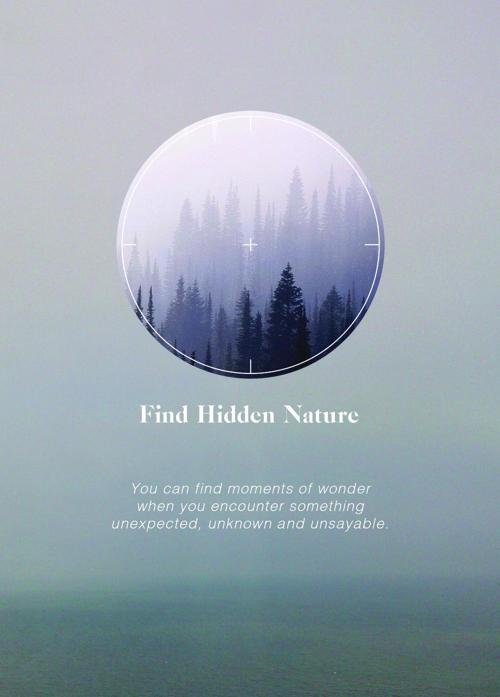 Find Hidden Nature