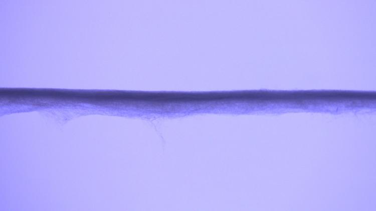 Microscope image of Knitregen yarn specimen