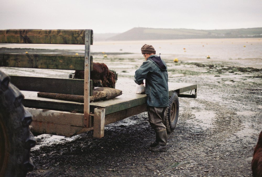Porthilly Oyster Farmer