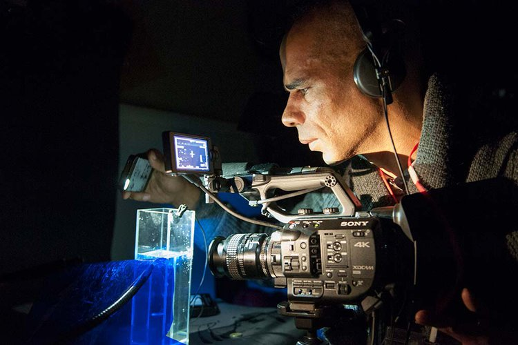 A photograph of RCA PhD Candidate Wayne Binitie documenting Antarctic ice at the British Antarctic Survey