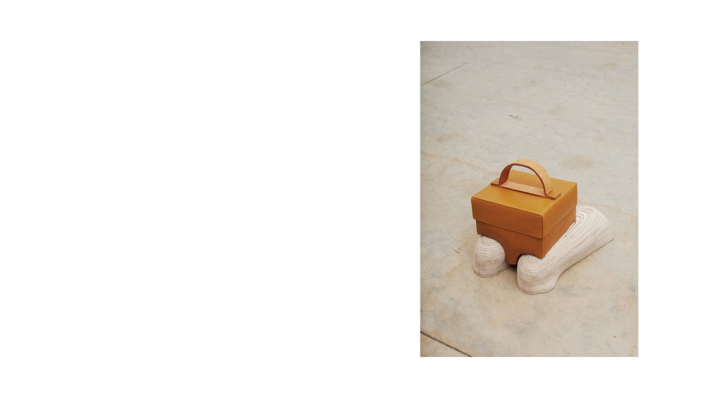 Position 003: Ginger Box Bag