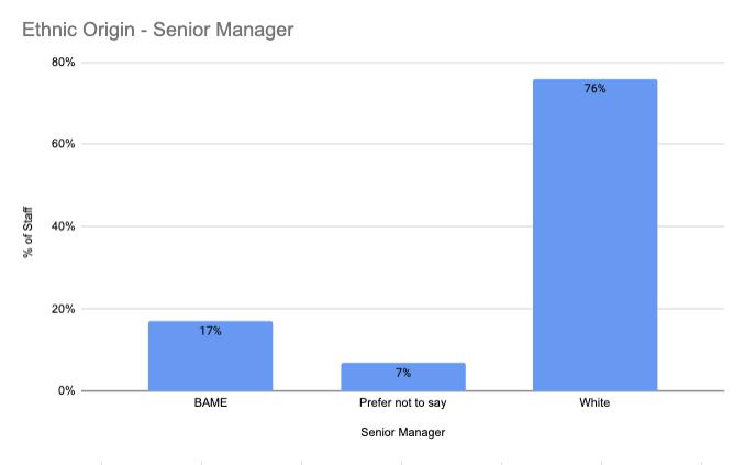Ethnic Origin – Senior Manager