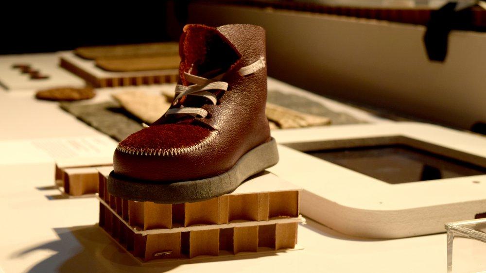 ShoeyShoes