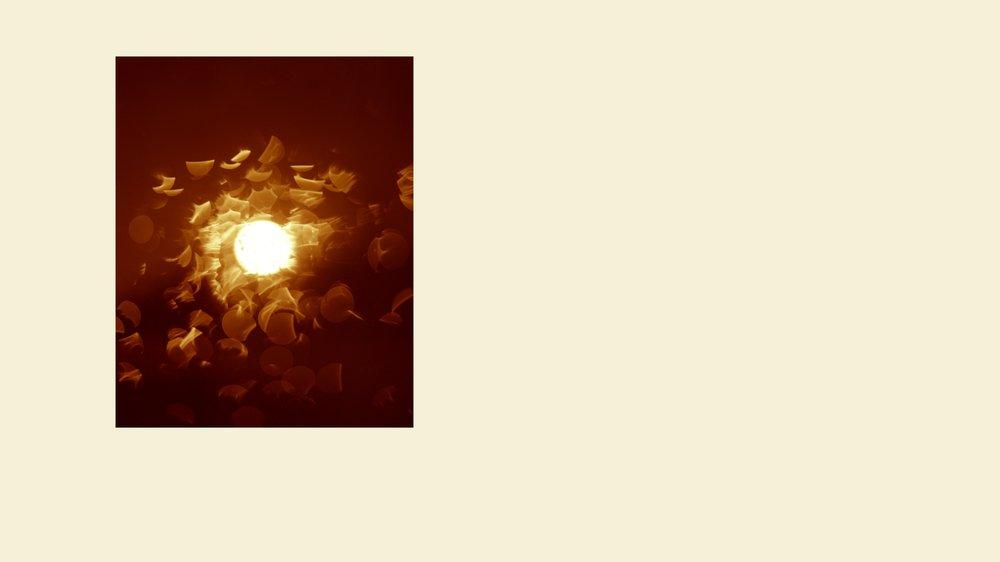 Light Will Tell