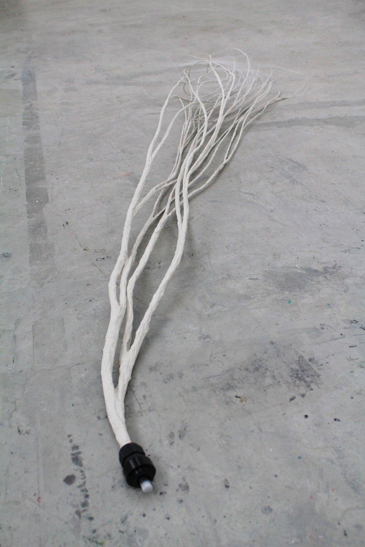 Yiwen Ma, twigs