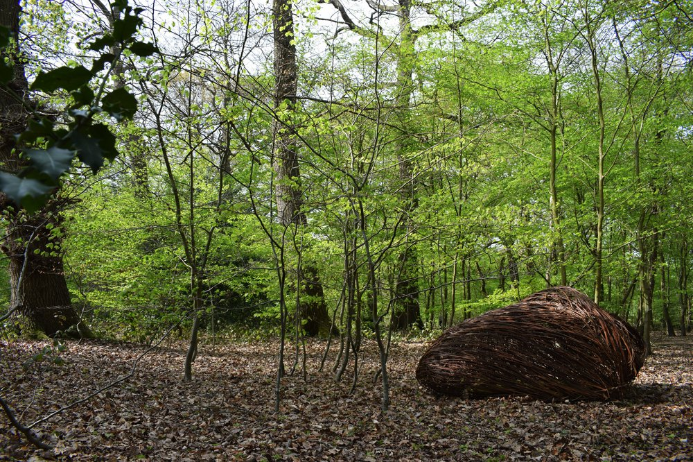 Nest 2- Woodland Installation