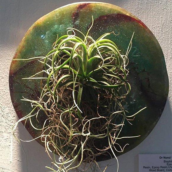 Biophilic Plate III