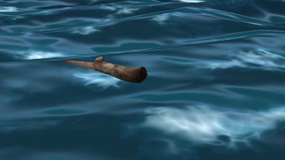 Floating Log (still)