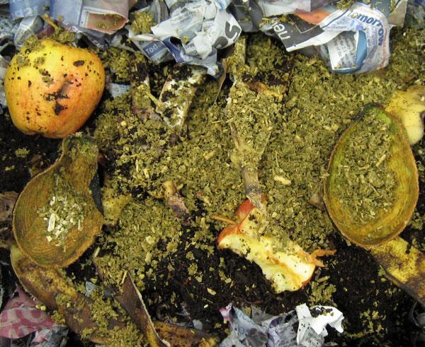 Biodegrade