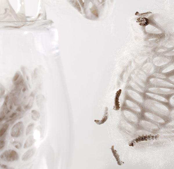 Biophilia: Organ Crafting