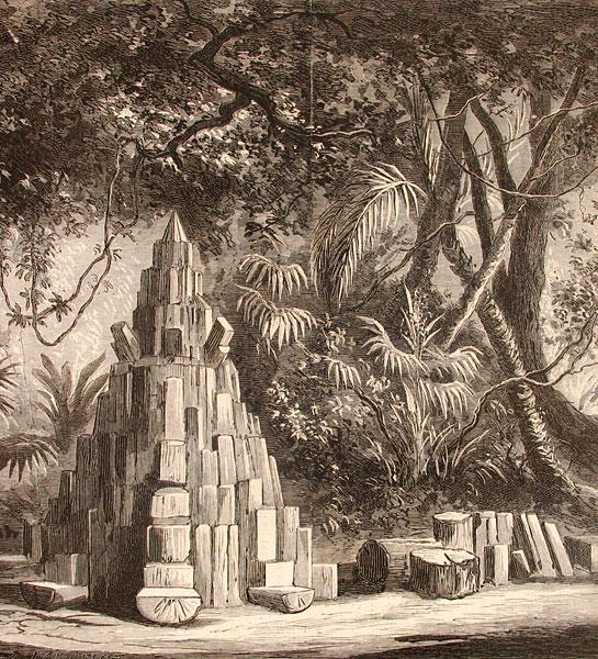 Forêt Vierge du Brésil (or, the Brazilian 'virgin forest' as represented at the Exposition Universelle in Paris, 1867)