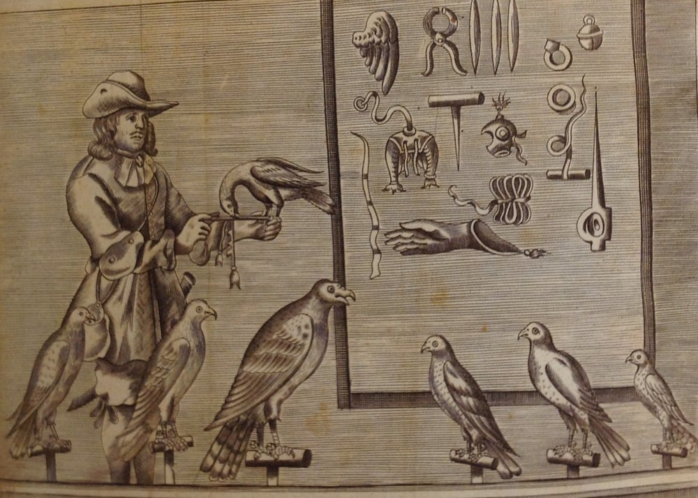 A falconer and several species of raptors in the mews, pictured with various pieces of falconry material culture. From Nicholas Cox's 1677 treatise, The Gentleman's Recreation: In Four Parts, viz. Hunting, Hawking, Fowling, Fishing.