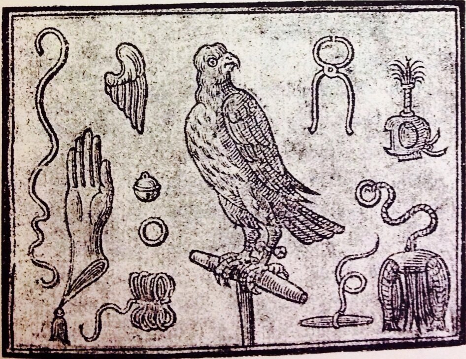 An image of a hawk surrounded by falconry material culture, taken from the title page of Edmund Bert's An Approve Treatise for Hawks and Hawking, published in London in 1619.