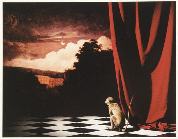 Image from 'Olivier Richon, fotografie 1989–2004', part of 'Trilogia' exhibition, Galeria Civica, Modena, 2004–5