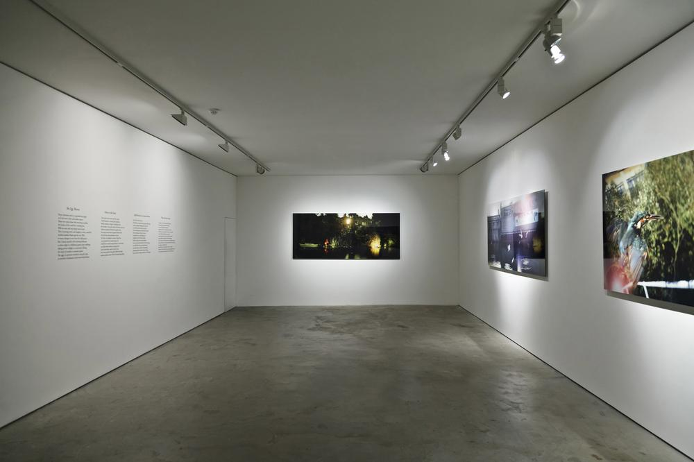 Installation view of the exhibition, Halcyon Song
