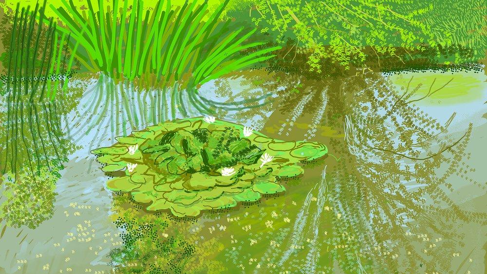 David Hockney, No. 340, 21st May 2020  iPad painting