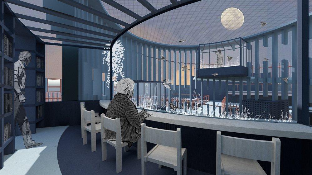 Rehabilitation Atrium, The Ageing Aviary