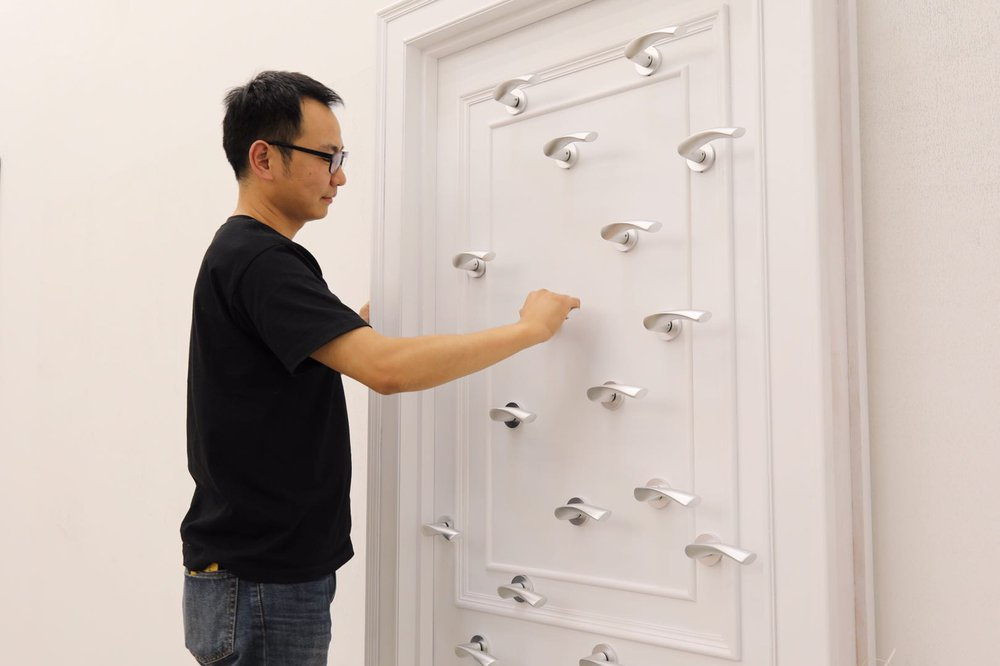 Door with handles