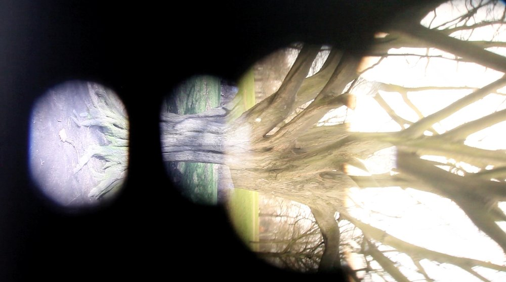 Surrounding (still from video)