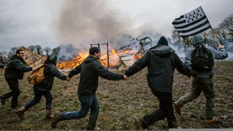 Protesters dancing around a bonfire