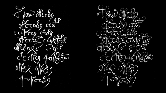 Voynich manuscript studies